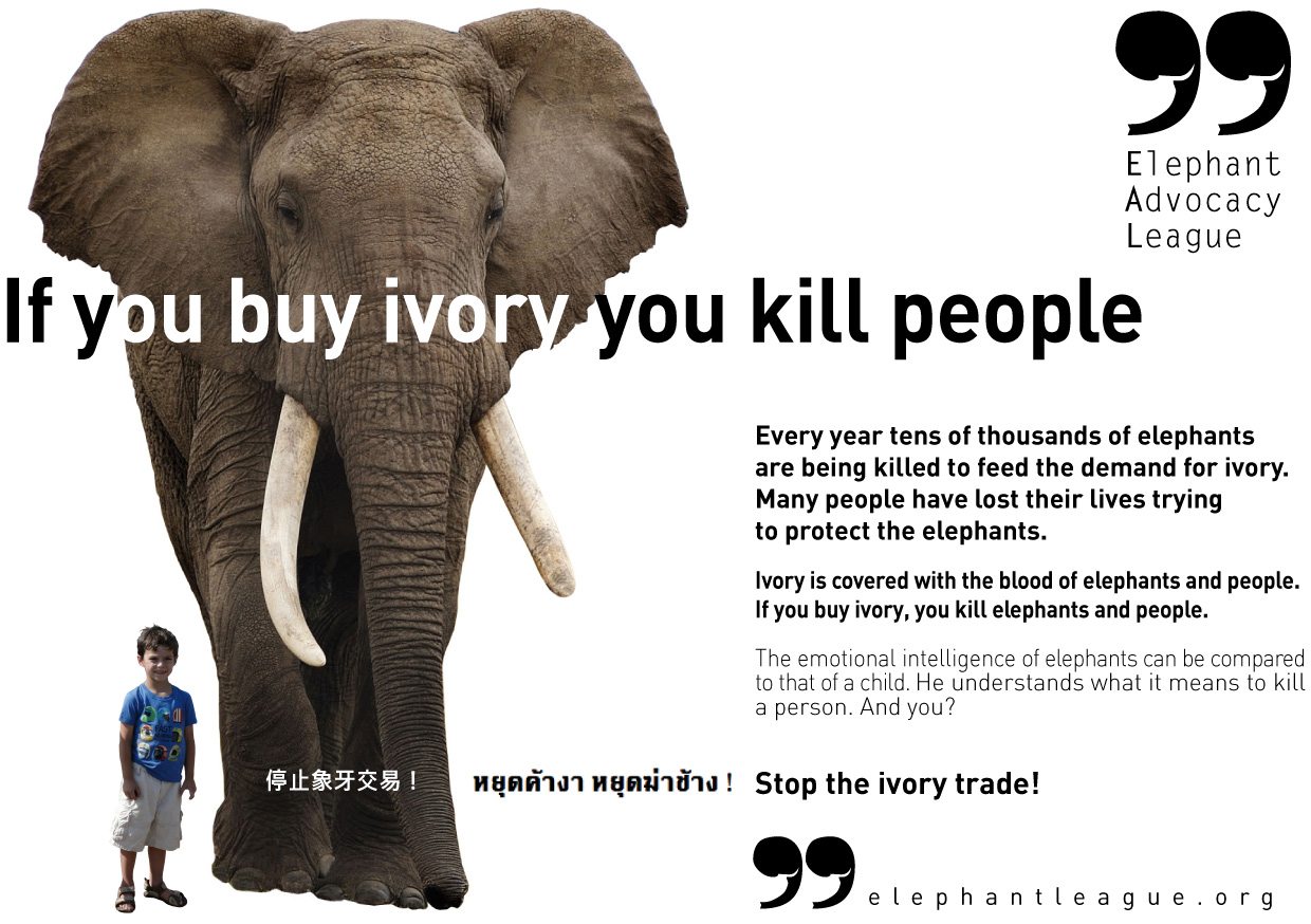 if you buy ivory you kill people
