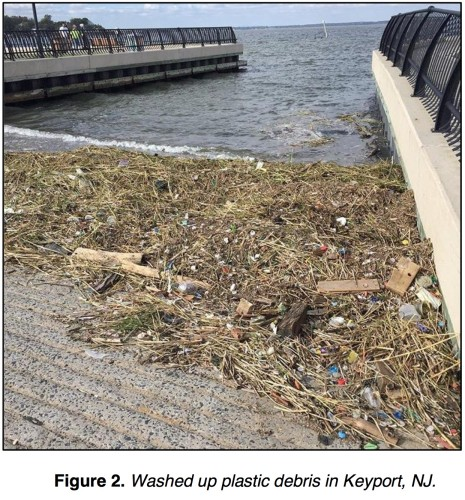 Washed up plastic debris in Keysport NJ