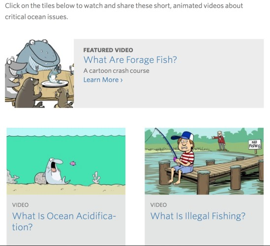 Animated videos on ocean protection terminology