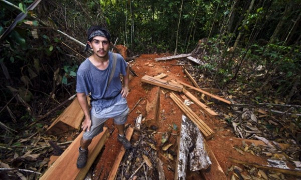 A naturalist and expedition guide stands on a pile of timber illegally logged from the rainforest.