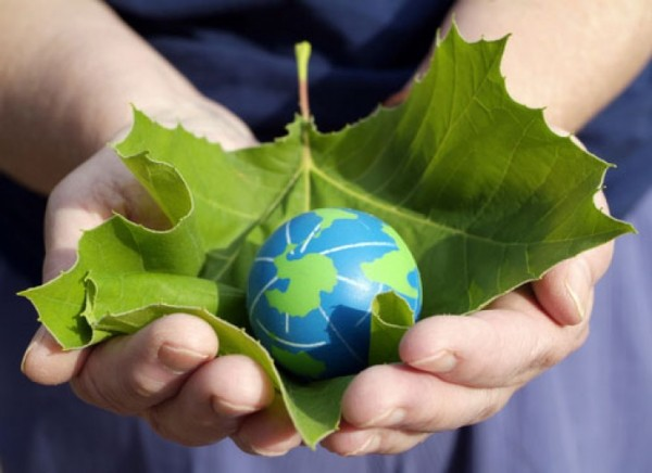globe in leaf in hands