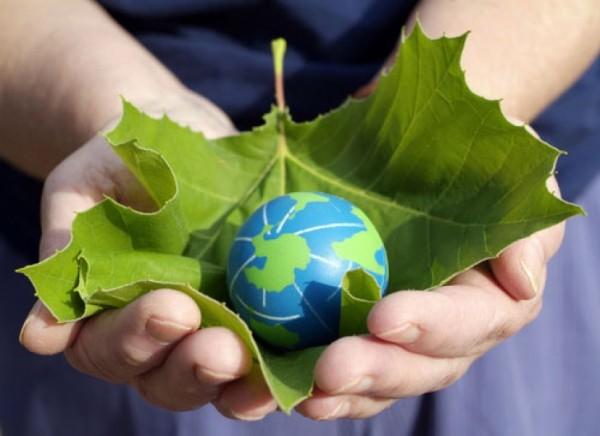 globe in leaf in hands