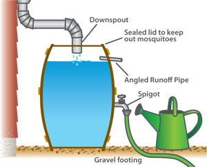 rain-barrel-diagram