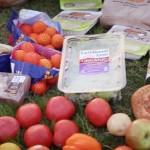 display rescued food